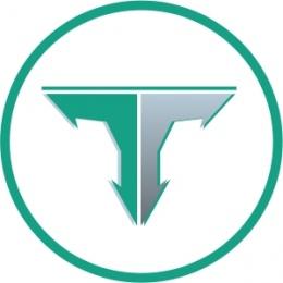 """Логотип компании ООО """"Вэб Трейдинг"""""""