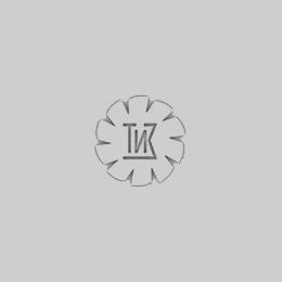 """Логотип компании ООО """"Томский инструментальный завод"""""""