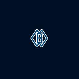 """Логотип компании ЗАО """"Сестрорецкий инструментальный завод"""""""