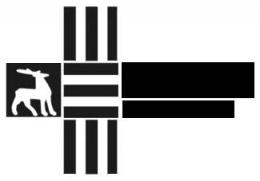 """Логотип компании ООО """"Нижегородский Литейный Металлургический Завод"""""""