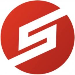 """Логотип компании ООО """"Сигнум"""""""