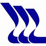 """Логотип компании ОАО """"Центр технологии судостроения и судоремонта"""""""