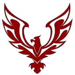 """Логотип компании ООО """"Гиперсталь"""""""