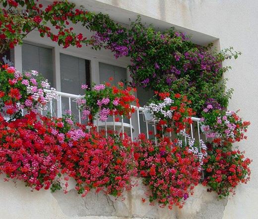 балконы итальянские