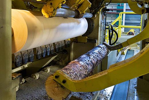 Оборудование для деревообработки