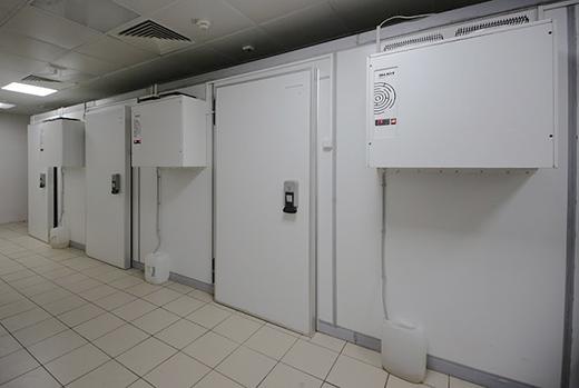 проектирование холодильных камер