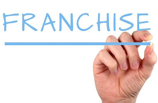 бизнес франшиза