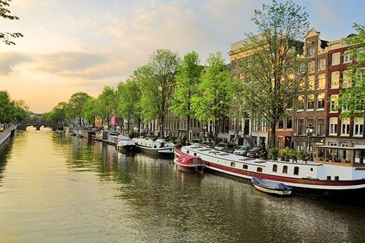 организация бизнеса в Нидерландах