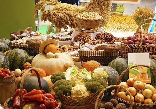 сельхоз выставка